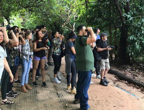 Parque do Cocó, em Fortaleza, recebe mais de 106 mil visitantes no primeiro semestre de 2019